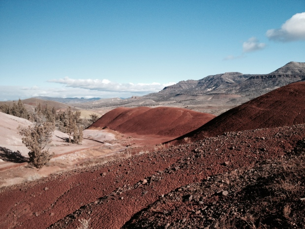 More of Painted Hills!