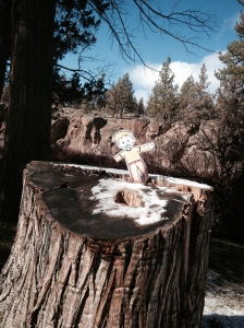 Flat Stanley showing off at Tumalo State Park