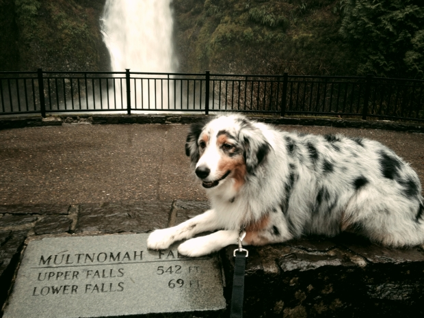 me at the base of Multnomah