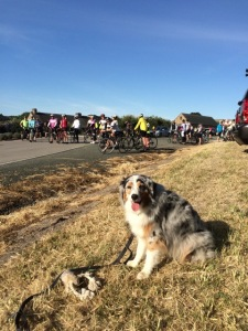 cyclists behind me